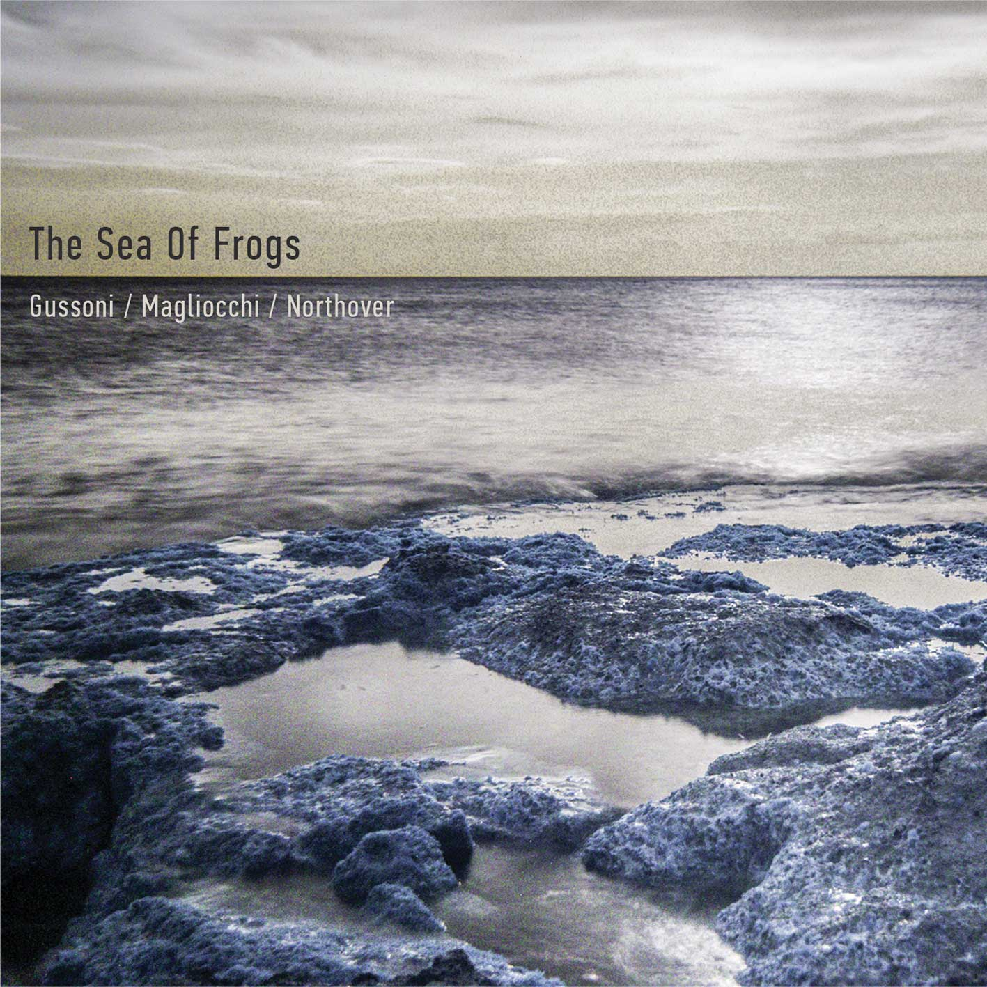 Gussoni / Magliocchi / Northover – The Sea Of Frogs